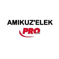 AMIKUZ'ELEK PRO&CIE